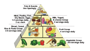PW Food Pyramid